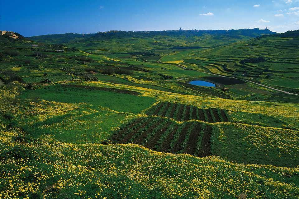 The Island of Malta , Natural Malta , Malta