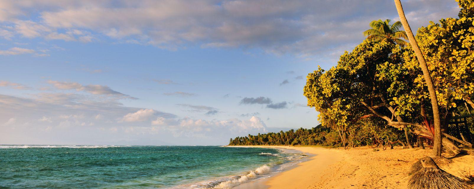 Feuillere Beach, Feuillere beach, Coasts, Marie-Galante