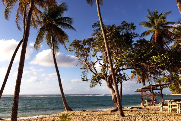 Stunning scenes, Feuillere beach, Coasts, Marie-Galante