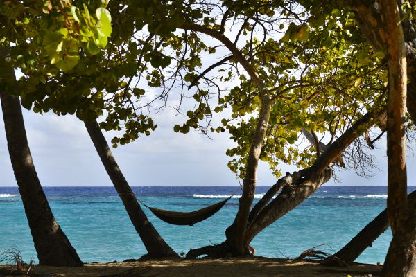 Relax, Feuillere beach, Coasts, Marie-Galante