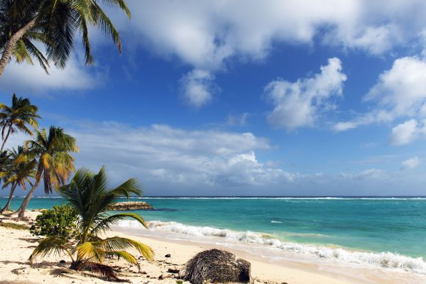 Beautiful beach, Feuillere beach, Coasts, Marie-Galante