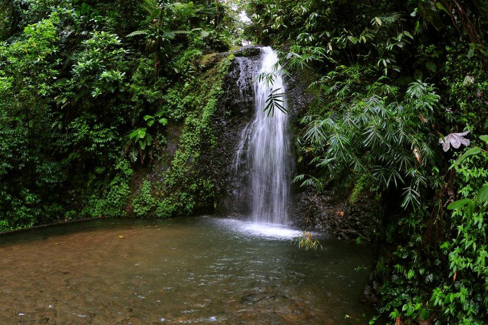 Jungle et volcans , Canyoning en Martinique , Martinique