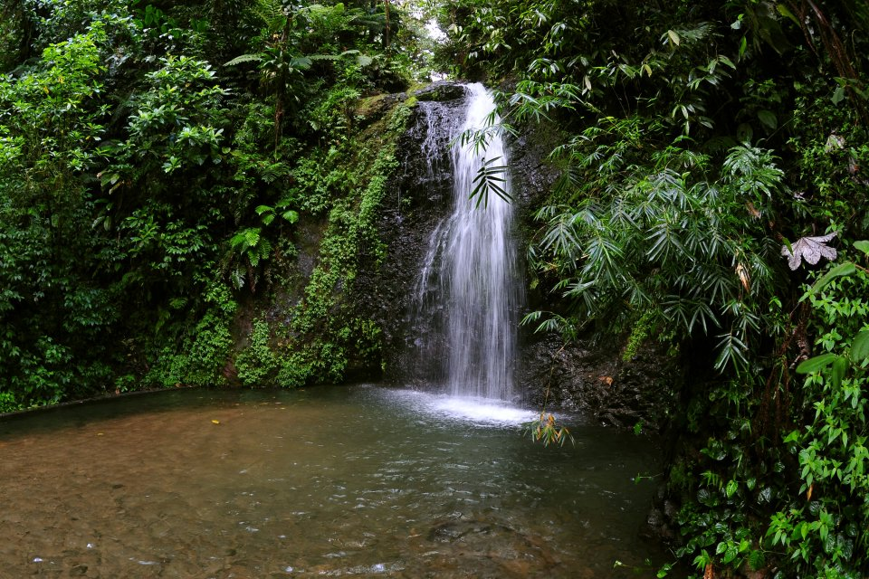 Canyoning in Martinica, Le gole di La Falaise, I paesaggi, Martinica