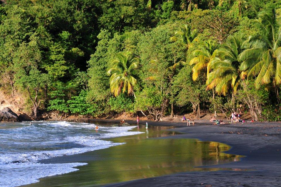 Les côtes, Antilles, Dom-Tom, ile, Caraibes, Martinique, France, outre-mer, Dom-Tom, Mer, Nature, amerique, anse, couloeuvre, plage