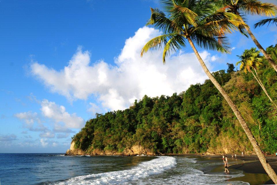 Les côtes, Antilles, Dom-Tom, ile, Caraibes, Martinique, France, ile, outre-mer, Dom-Tom, Mer, Nature, amerique, anse, couloeuvre, plage