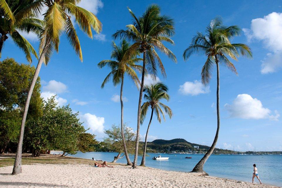 La plage de Sainte-Anne , Martinique