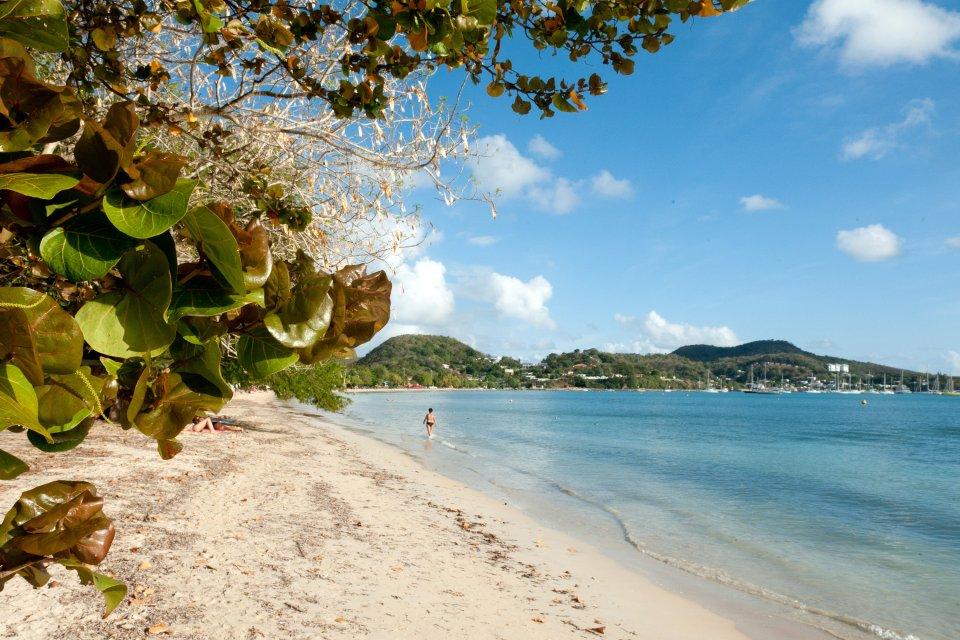 La plage de Sainte-Anne , Carte postale martiniquaise , Martinique