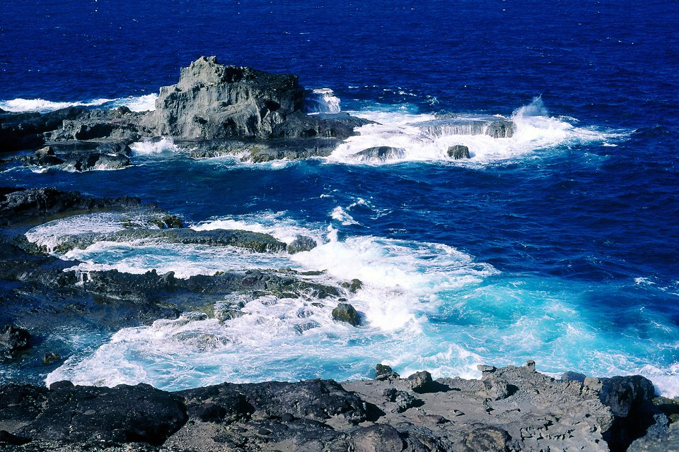 La presqu'île de la Caravelle , La pointe Caracoli , Martinique
