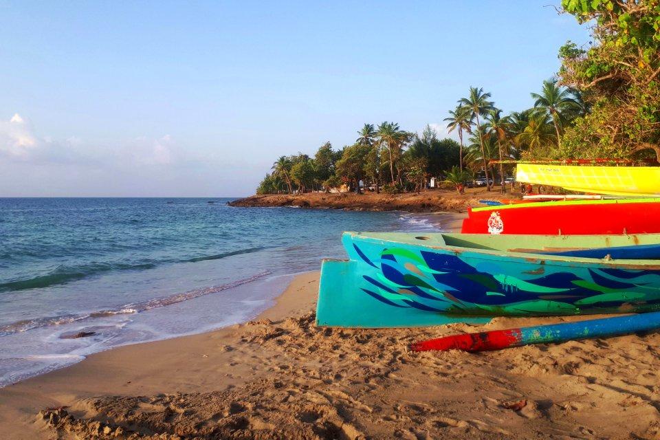 Les courses de Yole , Yole ou Gommiers ? , Martinique