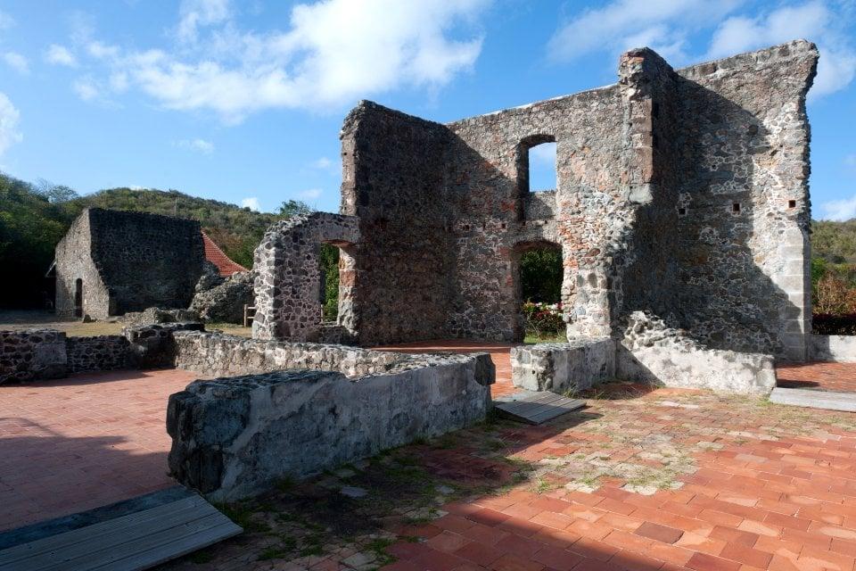 Le château Dubuc , Une zone naturelle protégée , Martinique