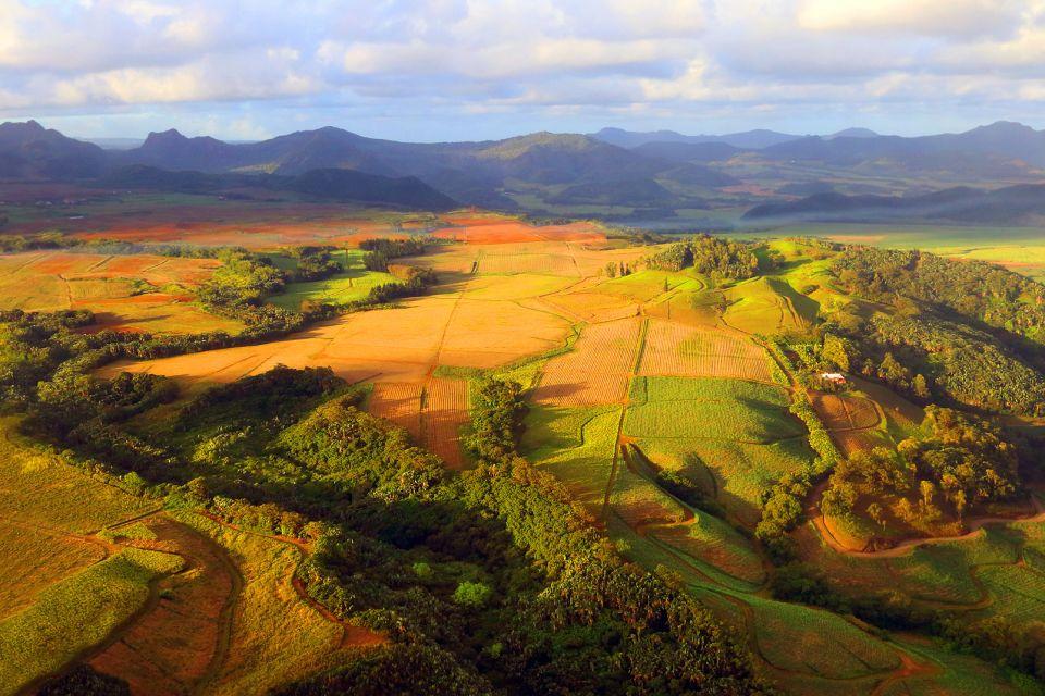 Les paysages, océan indien, culture, agriculture, afrique, île, maurice, canne à sucre