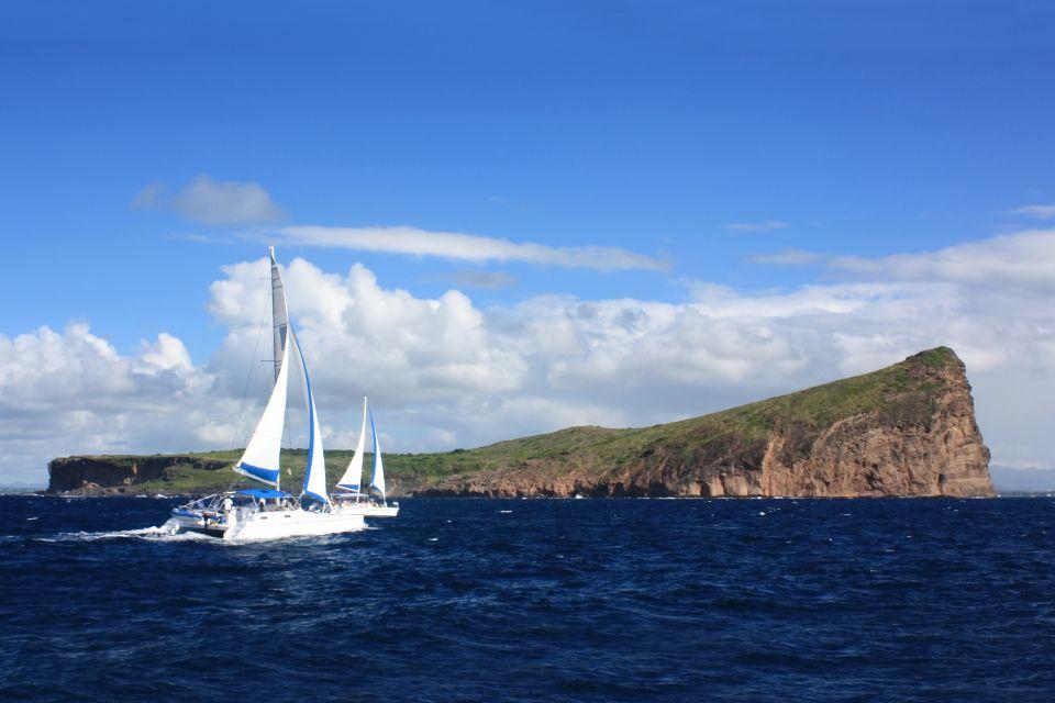 Les îles, Catamaran, Maurice, île, océan indien, afrique, coin de mire, voile, bateau