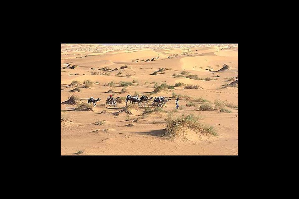 The caravan city of Aoudaghost , Mauritania