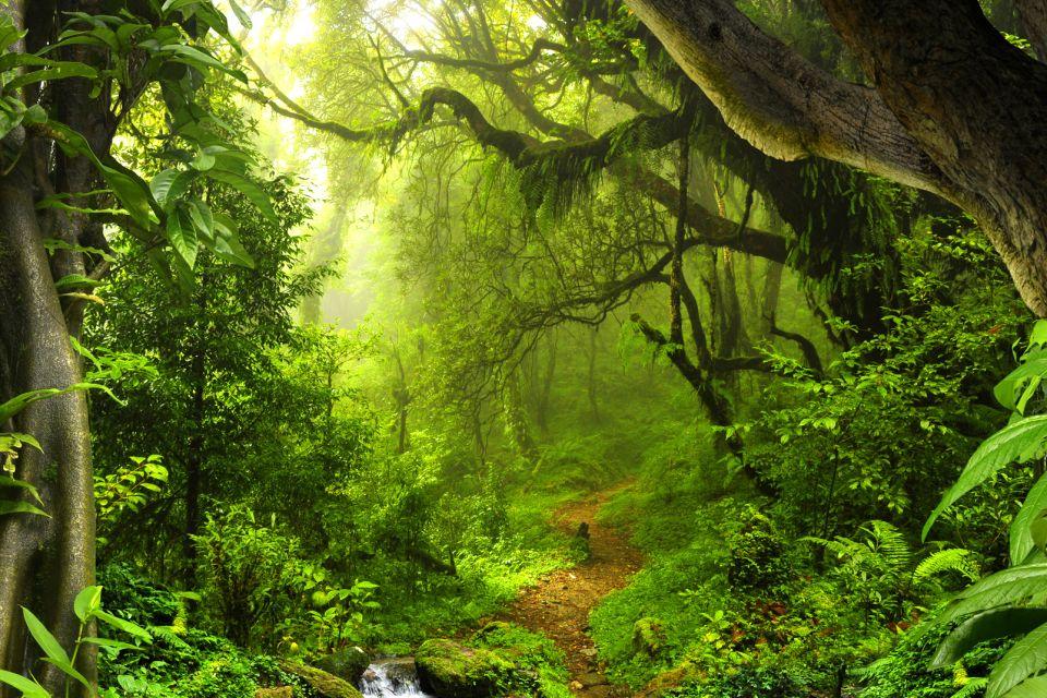 Grande Terre - Il monte Benara, Grande Terre - Il monte Bénara, I paesaggi, Mayotte