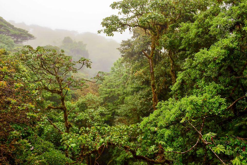 Grande Terre - Il monte Bénara, I paesaggi, Mayotte