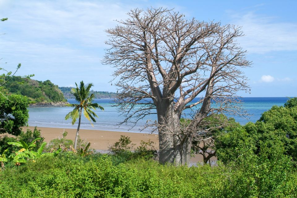 , Grande Terre - The south coast, Coasts, Mayotte