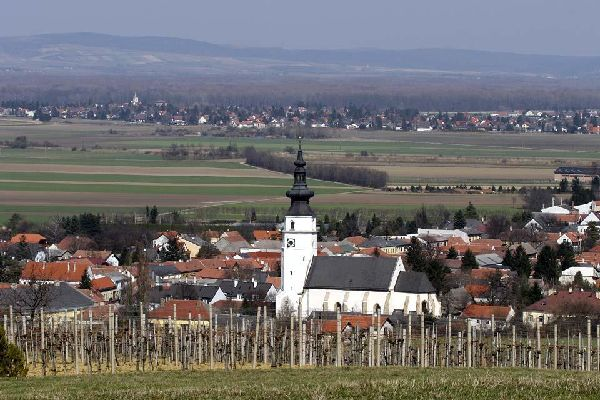 The Wienerwald , Austria
