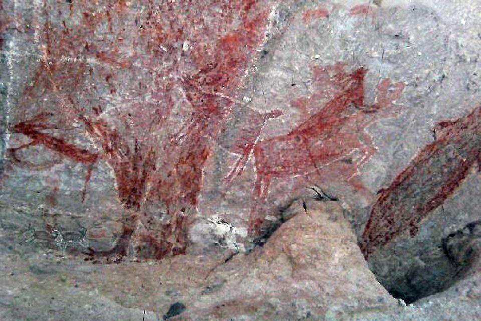 Le pitture rupestri della Cuesta de la Higuerita, del Cerro de Santa Marta o della Cueva de la Natividad. , Le arti e la cultura, Messico Bassa California