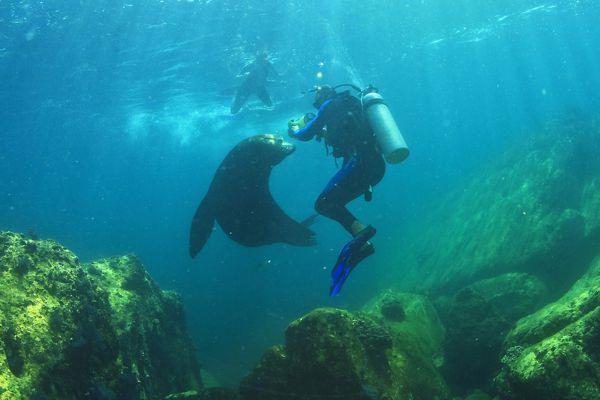 A windsurfer, Water sports, Activities and leisure, Baja California