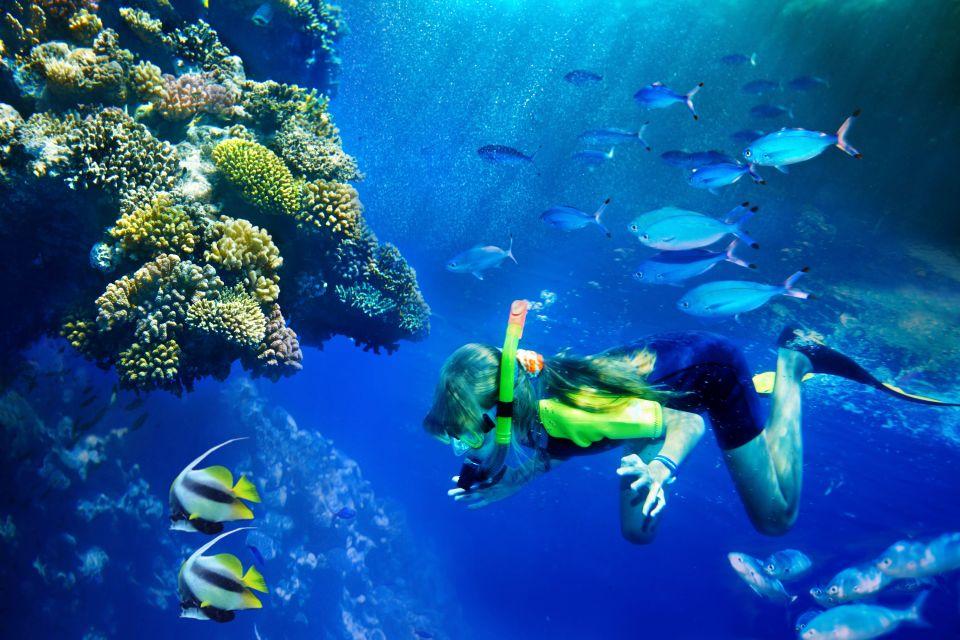 Lo snorkeling, Baja California, Le attività nautiche, Le attività e i divertimenti, Messico Bassa California