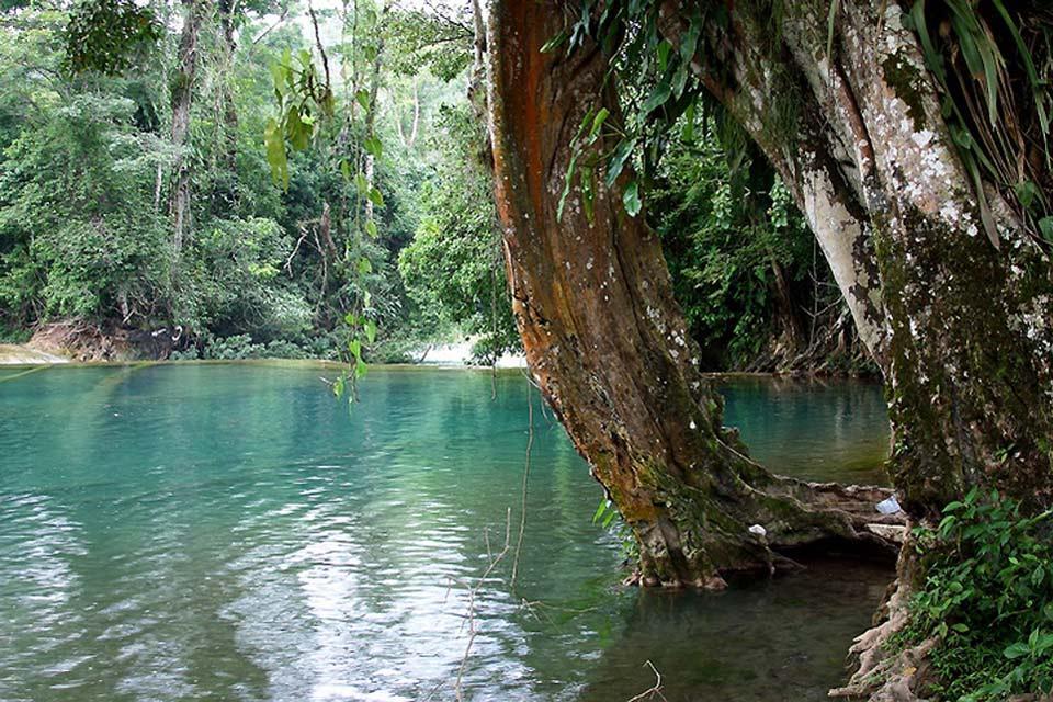 Los manantiales naturales , México