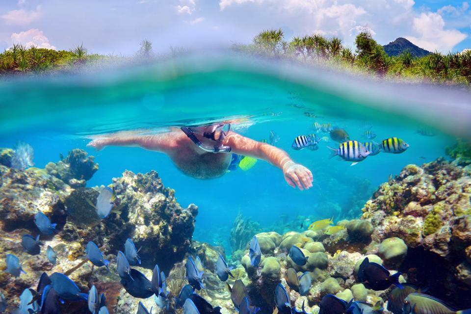 Le attività nautiche , Immersione sottomarina , Messico