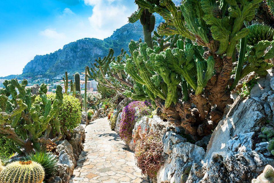 Il giardino esotico , Montecarlo
