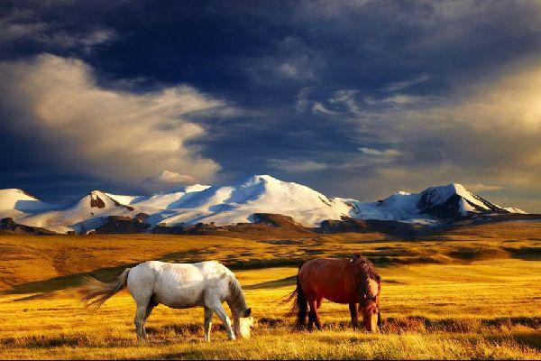La chaîne de l'Altaï , La chaîne montagneuse de l'Altaï, Mongolie , Mongolie