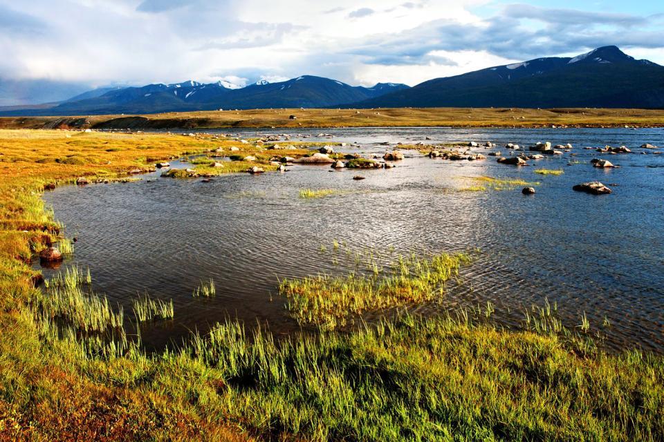 The Uvs province , The Uvs region, Mongolia , Mongolia
