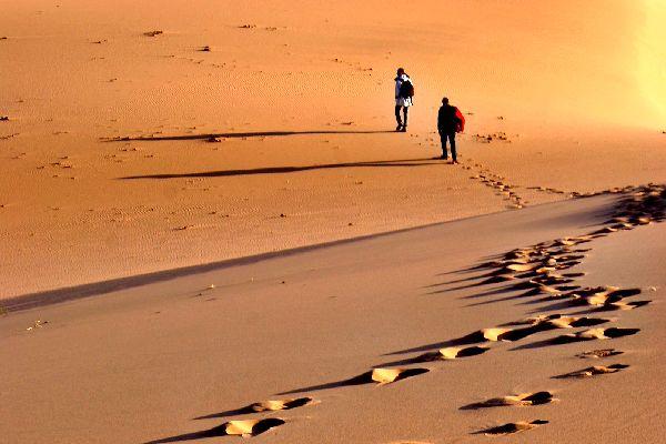 Le désert de Gobi , Gobi du Sud , Mongolie