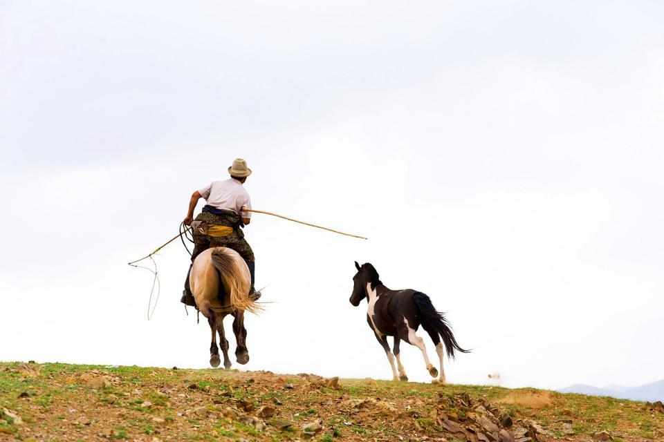 The nomads , The Mongolian Nomads , Mongolia