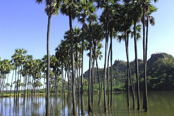 Mount Popa , Myanmar