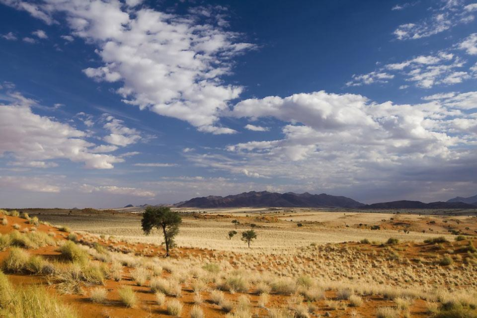 Namib-Naukluft national park , Namibia