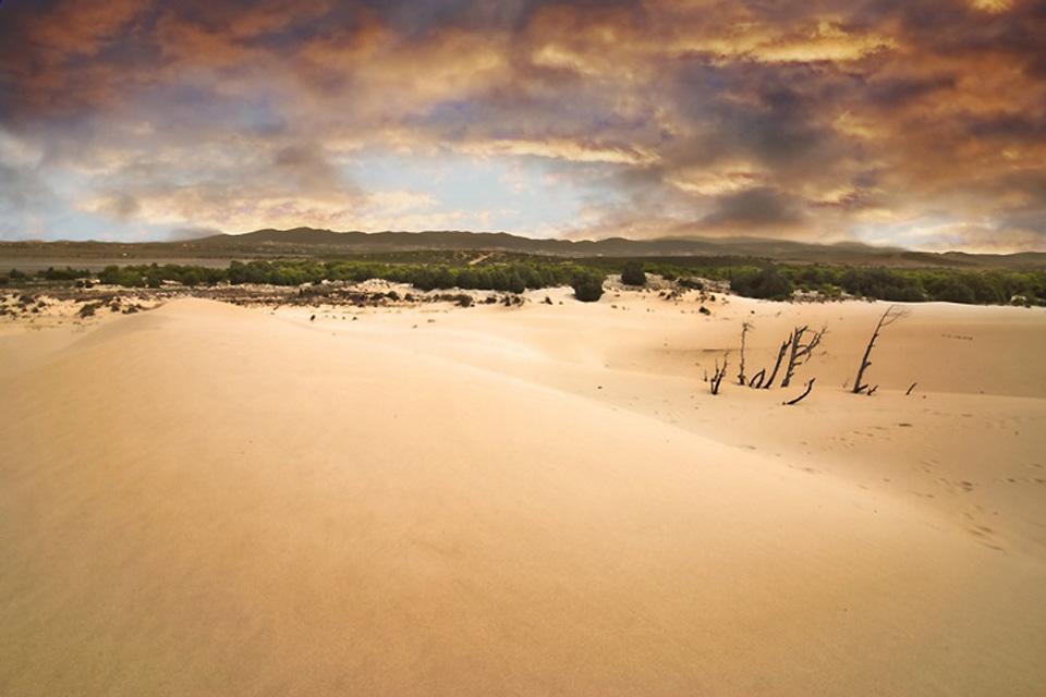 El desierto de Kalahari , Namibia