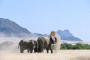 El Damaraland , Damaraland, Namibia , Namibia