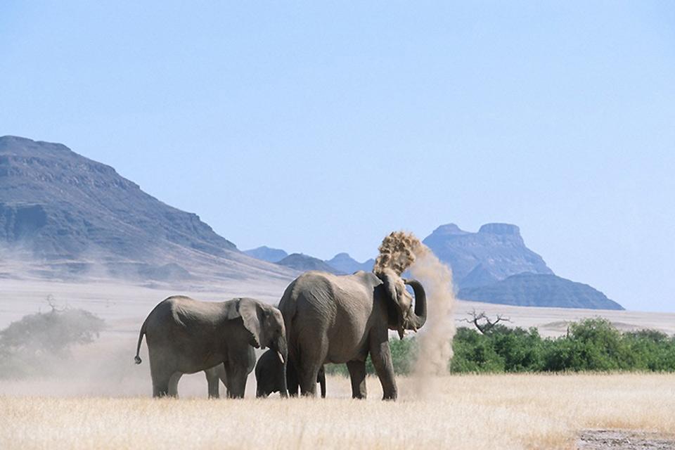 Damaraland , Damaraland, Namibia , Namibia