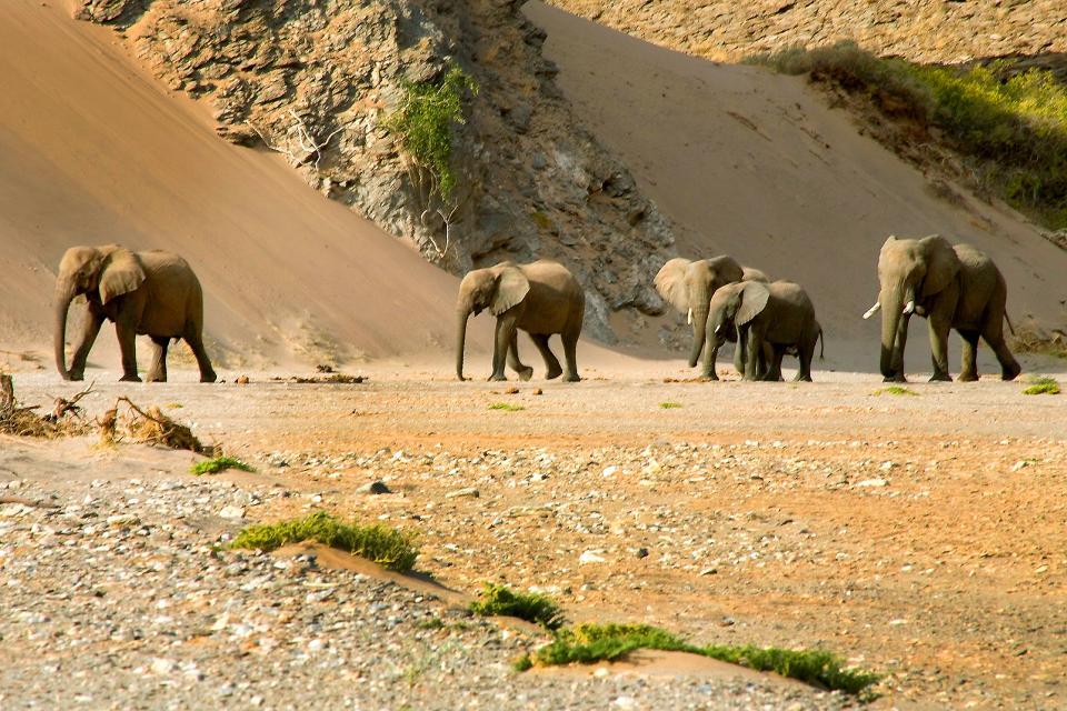 Skeleton coast , Namibia