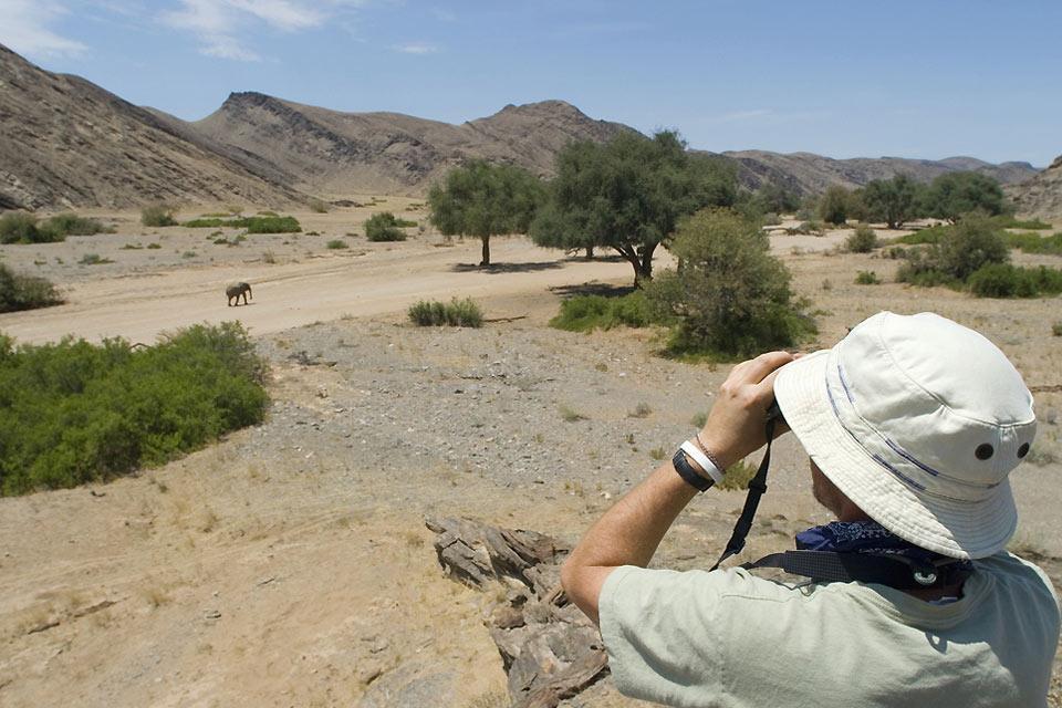 La chasse , Namibie
