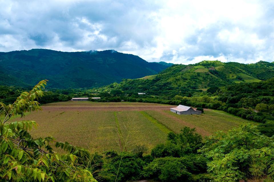 Plains , Nicaragua
