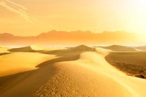 Le Ténéré , Niger: le Ténéré , Niger