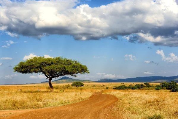 Le plateau de Jos , Nigeria