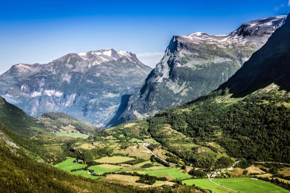 Le parc national de Jotunheimen  , Une flore exceptionnelle , Norvège