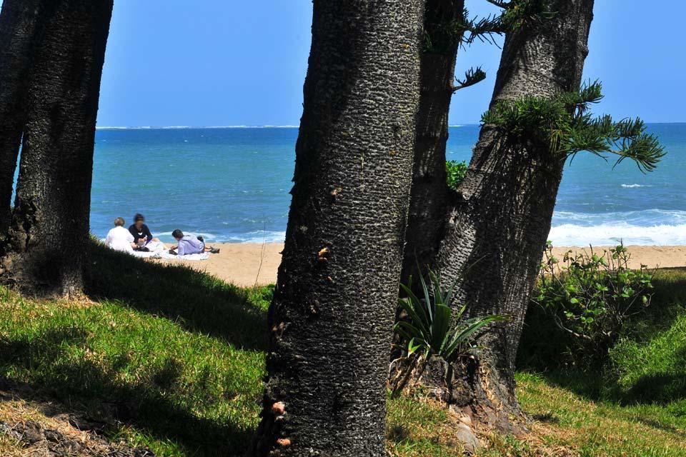 Grande Terre , La côte Ouest , Nouvelle-Calédonie