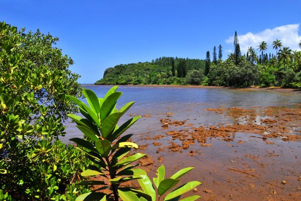 Grande Terre , the South coast , Grande Terre , The southern tip , New Caledonia