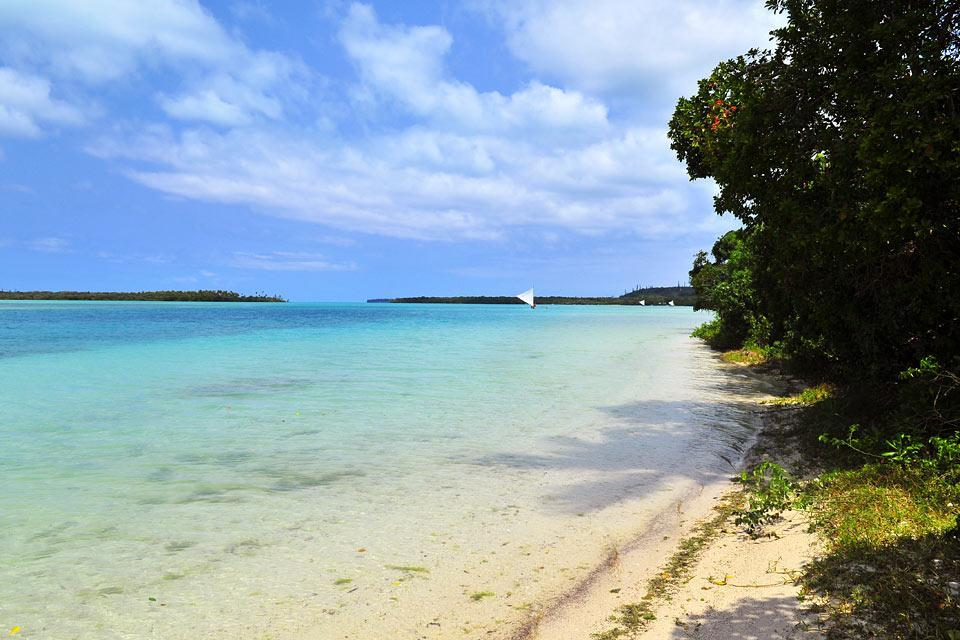 Die Insel der Pinien , die Upi-Bucht , Neukaledonien