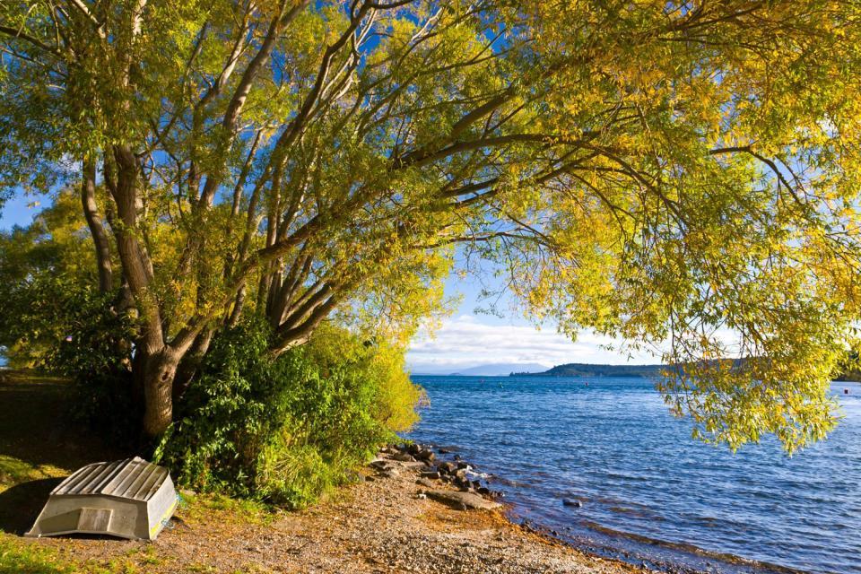 North island il lago taupo nuova zelanda for Lago n