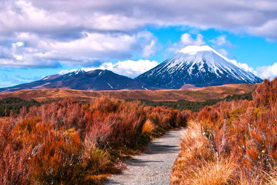 North Island , Il Parco Nazionale di Tongariro , Nuova Zelanda