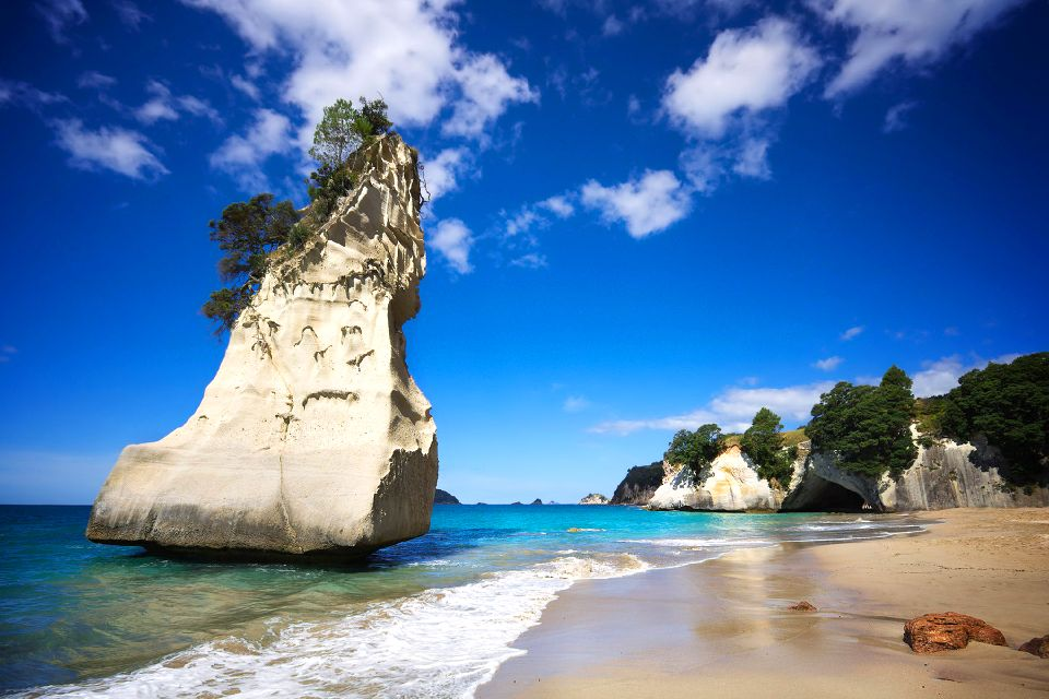 North Island , Coromandel peninsula , New Zealand