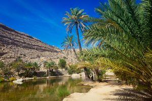 Les paysages, moyen-orient, Mascate, Oman, Wadi Bani Khalid, Sharqiyah, Khalid