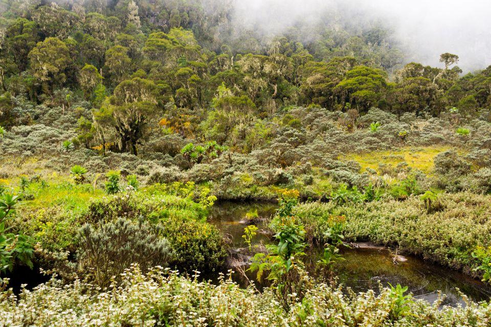 , The Ruwenzori mountains, Landscapes, Uganda